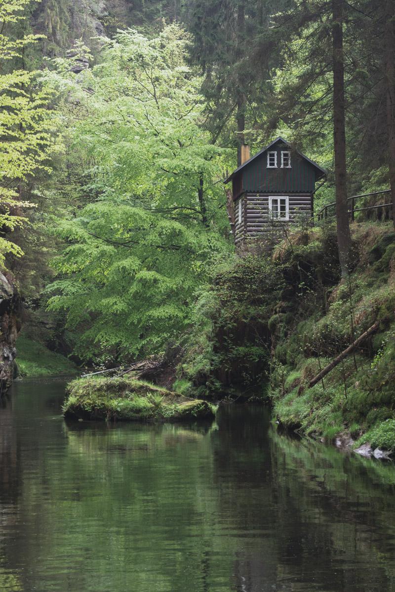 Haus an der Klamm umgeben von grünen Farn, Moos und Bäumen.